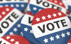 Why Voting in Local Elections is Important