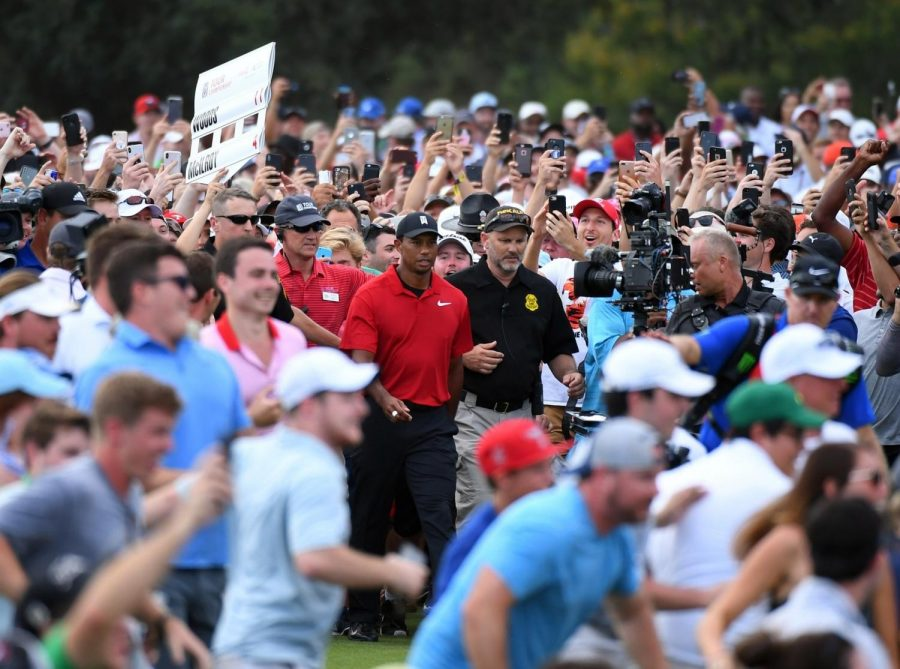 Tiger+Woods%3A+The+Comeback
