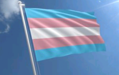 Transgender Americans Could be Losing More Rights