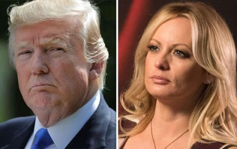 Stormy Daniels to Pay Trump's Legal Fees
