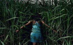 """""""In The Tall Grass"""" is Not as Bad as You May Think"""